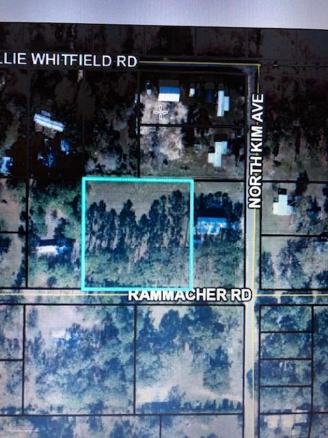 TBD Rammacher Rd, WEWAHITCHKA, FL 32465 (MLS #301724) :: Coastal Realty Group