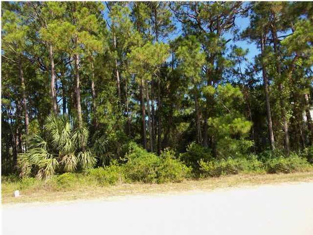 1108 West Pine Ave, ST. GEORGE ISLAND, FL 32328 (MLS #301751) :: Coastal Realty Group