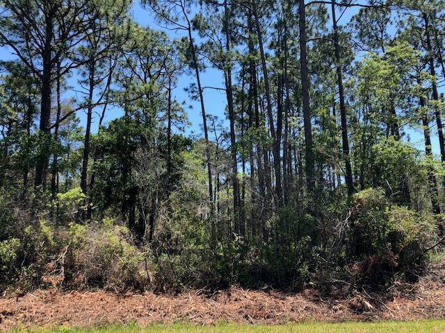 238 North Bay Shore Dr, EASTPOINT, FL 32328 (MLS #301775) :: Berkshire Hathaway HomeServices Beach Properties of Florida