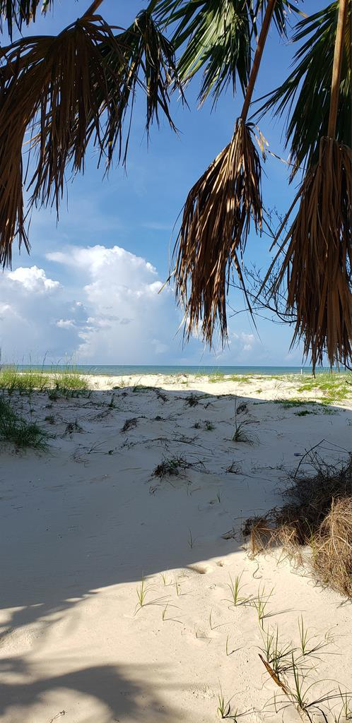 23B Indian Pass Rd, PORT ST. JOE, FL 32456 (MLS #301857) :: Coastal Realty Group
