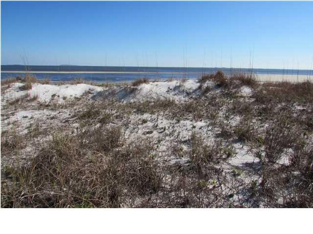 2404 Driftwood Point Ave, CARRABELLE, FL 32322 (MLS #301897) :: Coastal Realty Group