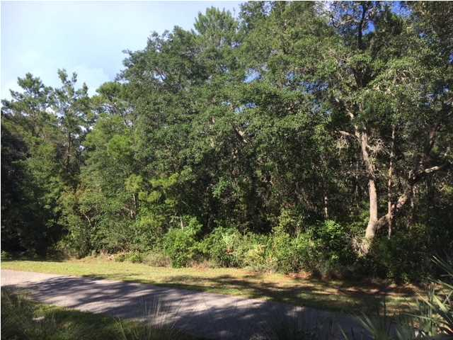 559 Walker Ln, APALACHICOLA, FL 32320 (MLS #302160) :: Coastal Realty Group