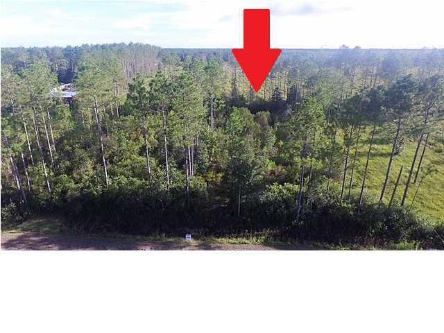 35 Doc Whitfield Rd, WEWAHITCHKA, FL 32465 (MLS #302228) :: Coastal Realty Group