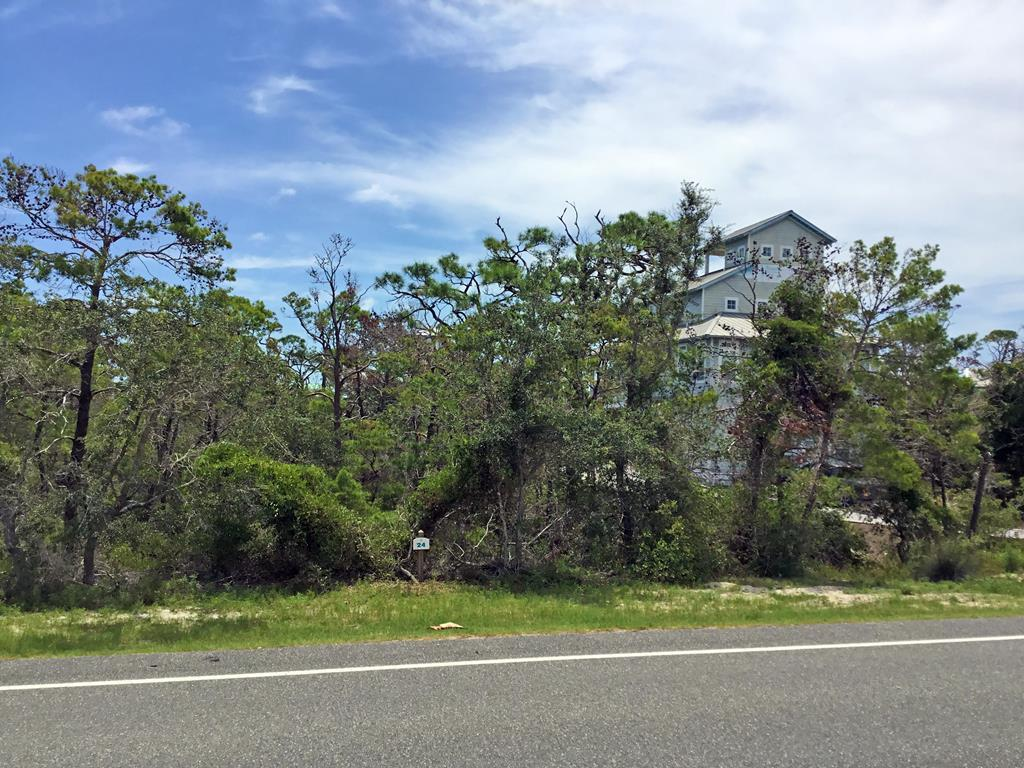 Lot 24 Cape San Blas Rd - Photo 1