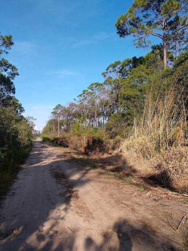763 Buck Rd, EASTPOINT, FL 32328 (MLS #302468) :: Anchor Realty Florida