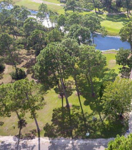 15 Plantation Dr, PORT ST. JOE, FL 32456 (MLS #302526) :: Berkshire Hathaway HomeServices Beach Properties of Florida