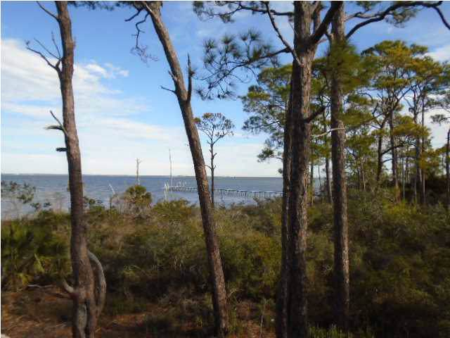 1767 E Gulf Beach Dr, ST. GEORGE ISLAND, FL 32328 (MLS #302823) :: Berkshire Hathaway HomeServices Beach Properties of Florida