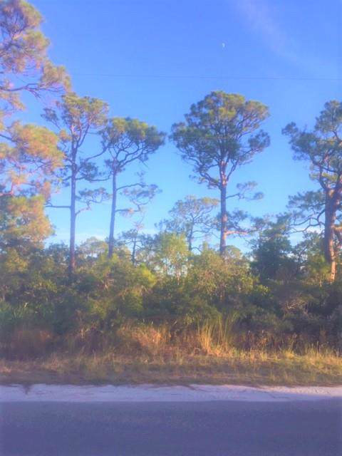 732 W Bayshore Dr, ST. GEORGE ISLAND, FL 32328 (MLS #302922) :: Anchor Realty Florida