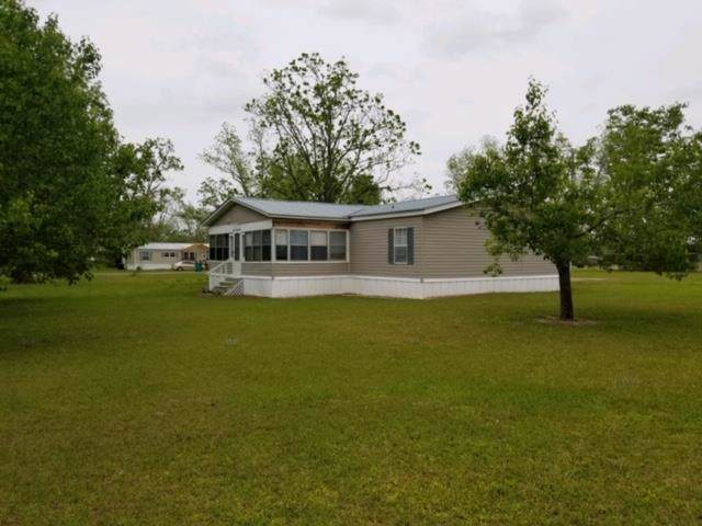 5380 7TH ST, Malone, FL 32445 (MLS #303021) :: Anchor Realty Florida