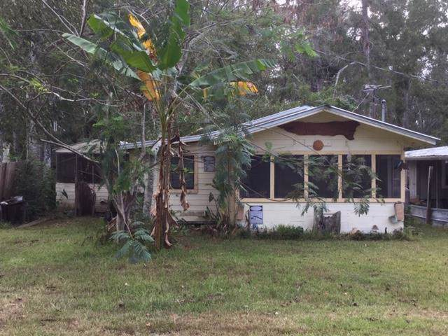 773 Bryant Landing Rd, WEWAHITCHKA, FL 32465 (MLS #303029) :: Coastal Realty Group
