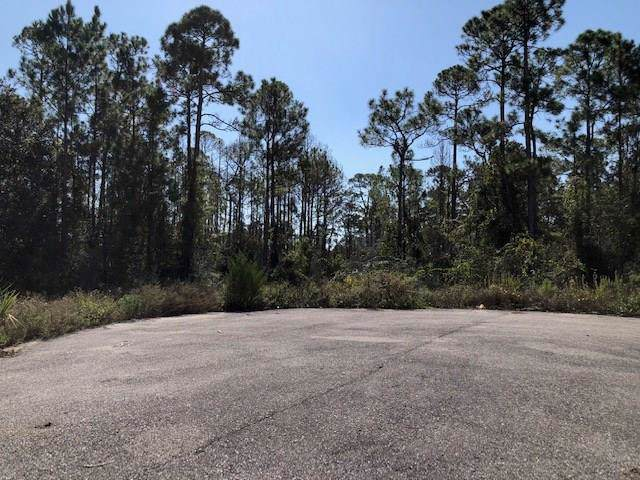 1533 River View Dr, CARRABELLE, FL 32322 (MLS #303122) :: Coastal Realty Group