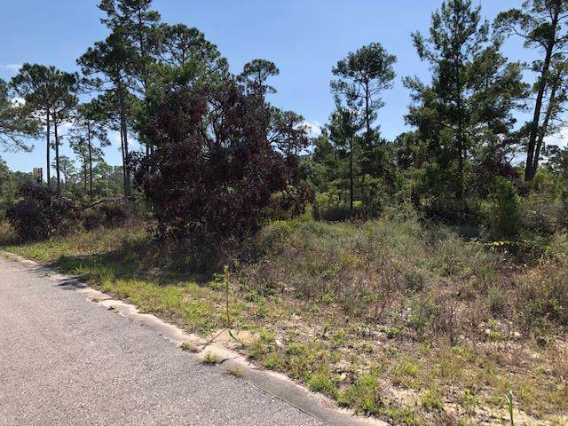 196 Ante-Bellum Loop, CARRABELLE, FL 32322 (MLS #303125) :: Coastal Realty Group