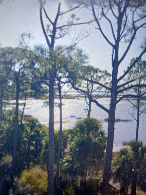 150 Heron Bay Ln, PORT ST. JOE, FL 32456 (MLS #303203) :: Coastal Realty Group