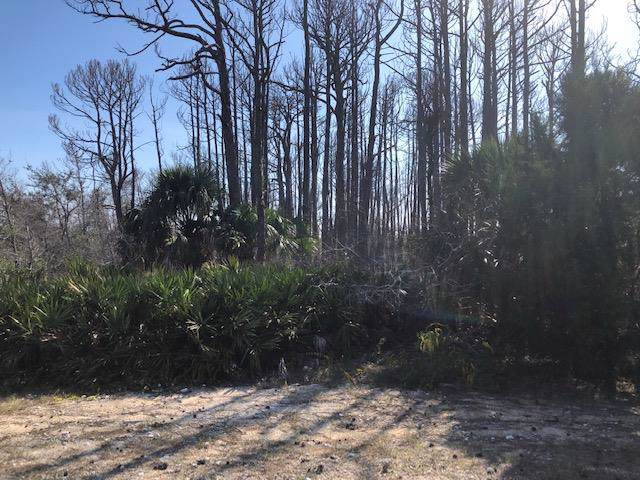 2 Driftwood Ave, CAPE SAN BLAS, FL 32456 (MLS #303211) :: Berkshire Hathaway HomeServices Beach Properties of Florida