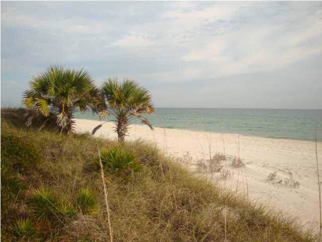 2336 Schooner Landing, ST. GEORGE ISLAND, FL 32328 (MLS #303330) :: Coastal Realty Group