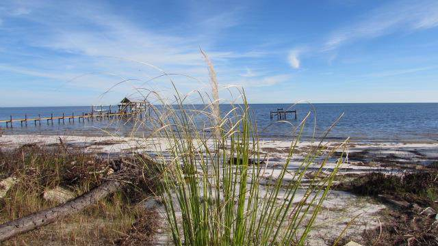 3110 Hwy 98 E, CARRABELLE, FL 32323 (MLS #303380) :: Coastal Realty Group
