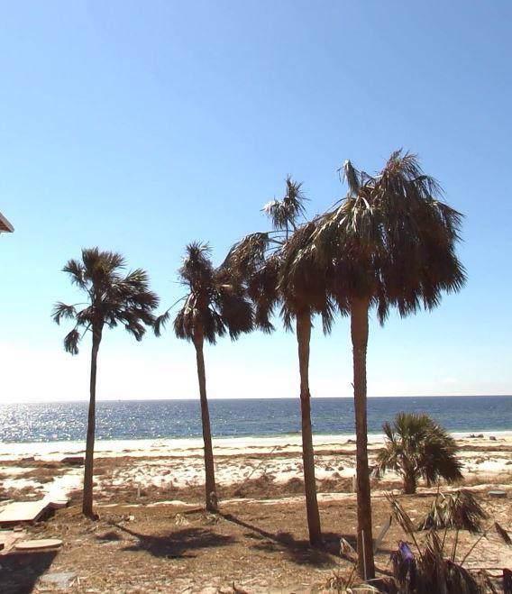 Lot 2 Hwy 98, PORT ST. JOE, FL 32456 (MLS #303560) :: Coastal Realty Group