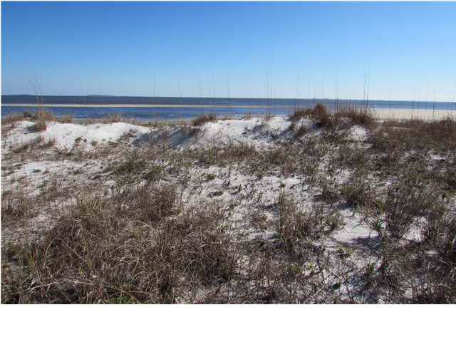 2404 Driftwood Point Ave, CARRABELLE, FL 32322 (MLS #303637) :: Coastal Realty Group
