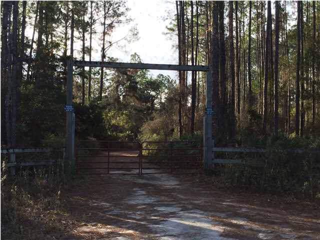 526 Mill Rd, CARRABELLE, FL 32322 (MLS #303722) :: Berkshire Hathaway HomeServices Beach Properties of Florida