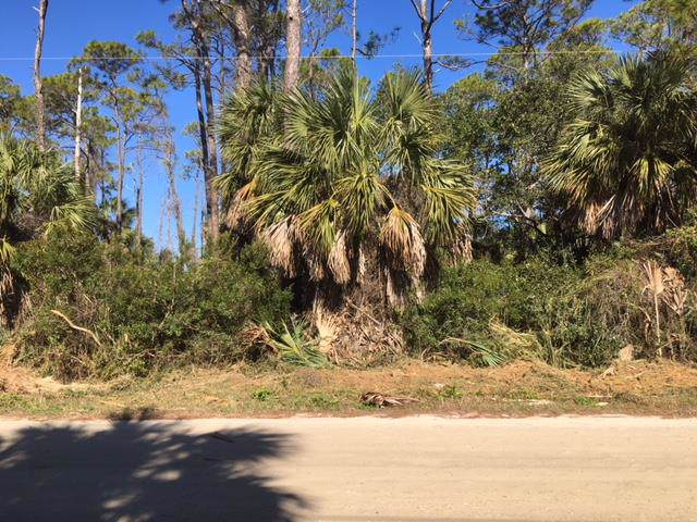 641 E Pine Ave, ST. GEORGE ISLAND, FL 32328 (MLS #303761) :: Coastal Realty Group