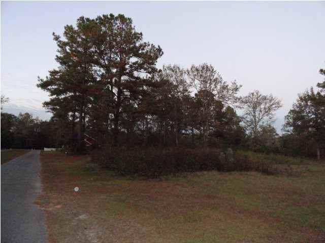 0 Charlie Gaskin Dr Lots 7 & 8, WEWAHITCHKA, FL 32465 (MLS #303804) :: The Naumann Group Real Estate, Coastal Office