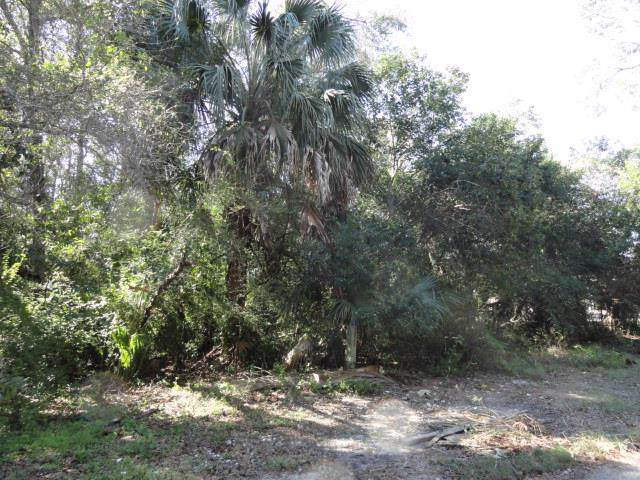 258 7TH ST, APALACHICOLA, FL 32320 (MLS #303806) :: Coastal Realty Group