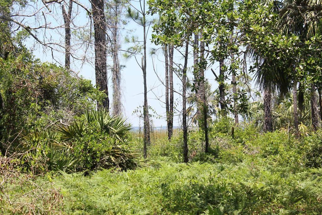 1033 E Pine St - Photo 1