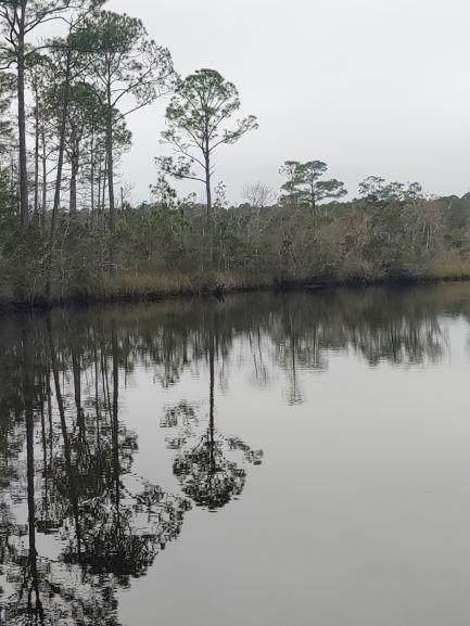 1965 River Bend Plantation Rd, CARRABELLE, FL 32322 (MLS #303881) :: Coastal Realty Group