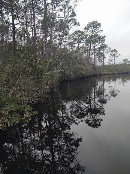 1973 River Bend Plantation Rd, CARRABELLE, FL 32323 (MLS #303885) :: Coastal Realty Group