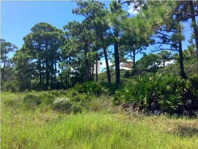 17 Mccosh Mill Rd, CAPE SAN BLAS, FL 32456 (MLS #304148) :: The Naumann Group Real Estate, Coastal Office