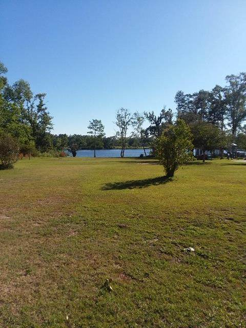 396 W Lakeview Dr, WEWAHITCHKA, FL 32465 (MLS #304573) :: Anchor Realty Florida