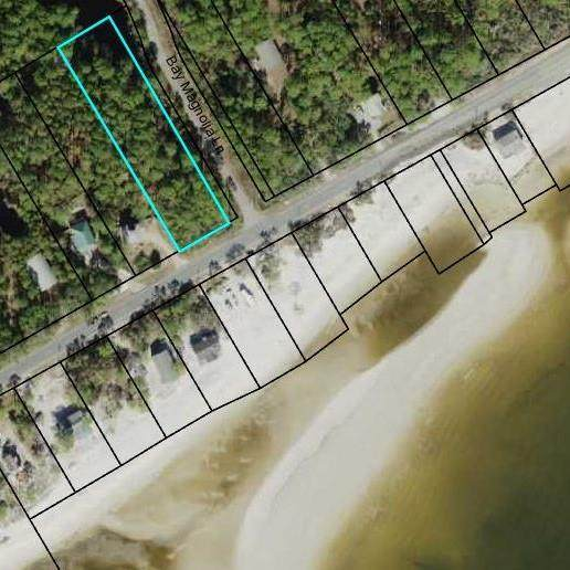2335 Hwy 98 W, CARRABELLE, FL 32322 (MLS #304589) :: Anchor Realty Florida