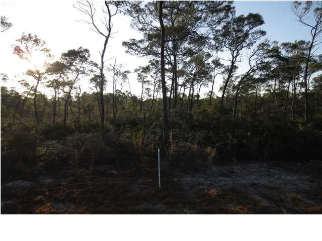 306 Blue Heron Dr, EASTPOINT, FL 32328 (MLS #304591) :: Anchor Realty Florida
