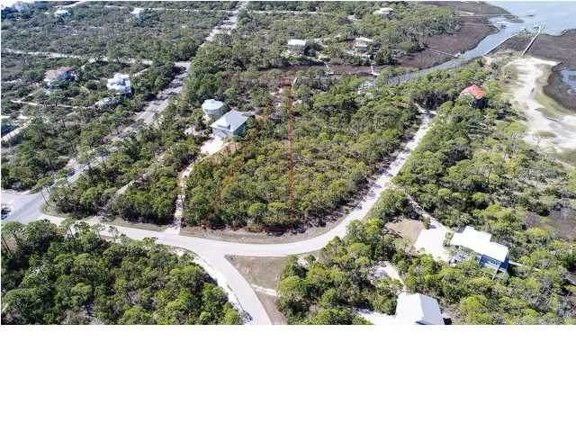 1651 Gannet Ct, ST. GEORGE ISLAND, FL 32328 (MLS #304787) :: Anchor Realty Florida