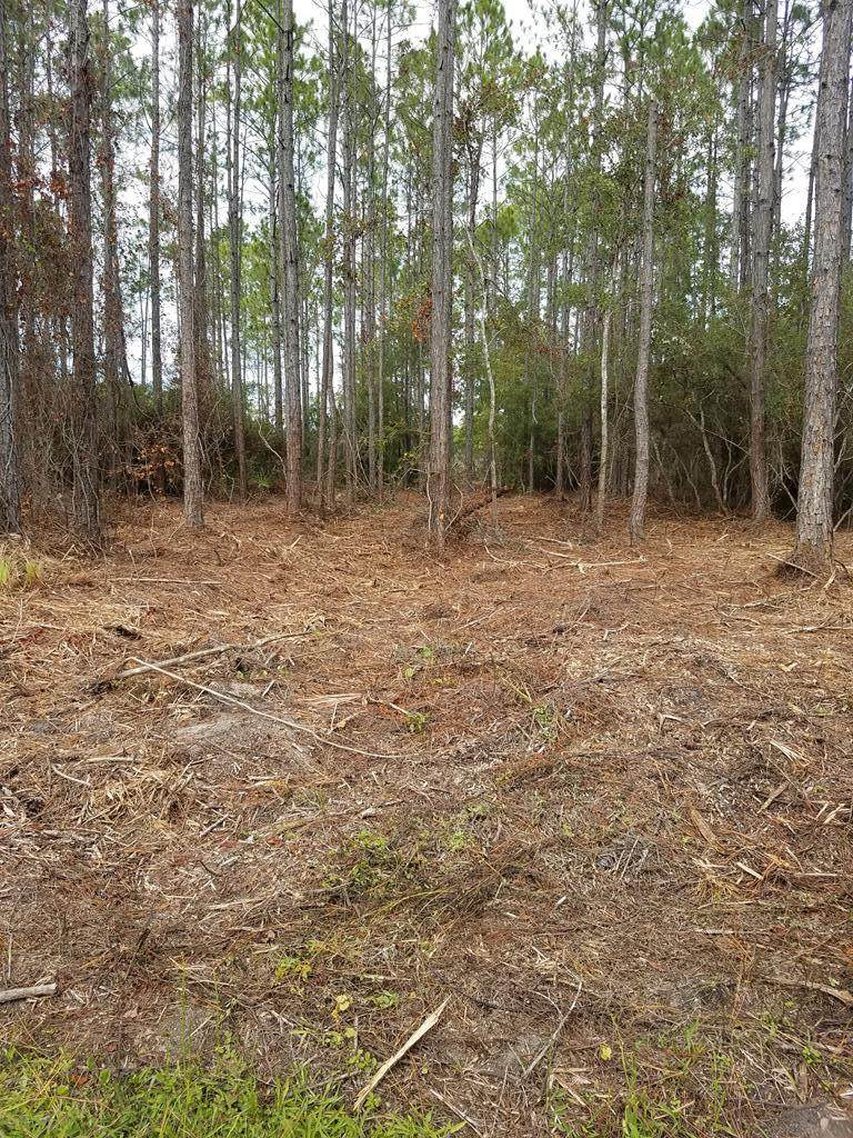 891 Mill Rd - Photo 1