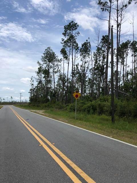 TBD Jarrott Daniels Rd, WEWAHITCHKA, FL 32465 (MLS #305104) :: The Naumann Group Real Estate, Coastal Office