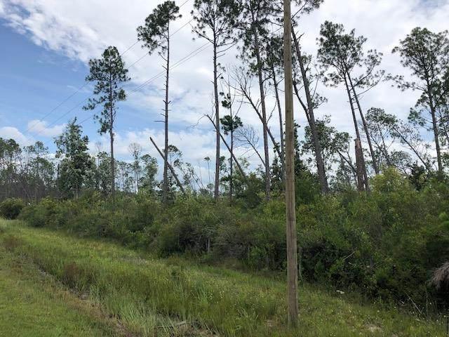 TBD Cr 386 N, WEWAHITCHKA, FL 32465 (MLS #305105) :: The Naumann Group Real Estate, Coastal Office