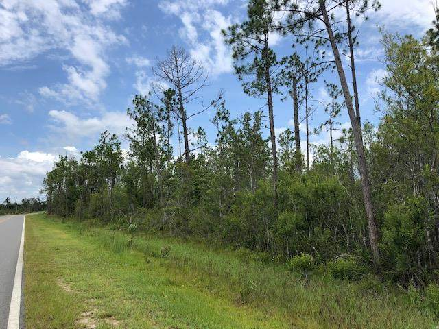 TBD Jarrott Daniels Rd, WEWAHITCHKA, FL 32465 (MLS #305107) :: The Naumann Group Real Estate, Coastal Office