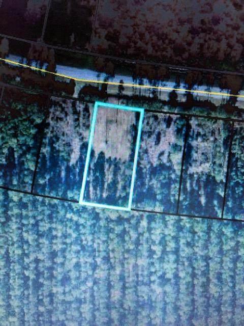 TBD Doc Whitfield Rd, WEWAHITCHKA, FL 32465 (MLS #305125) :: The Naumann Group Real Estate, Coastal Office