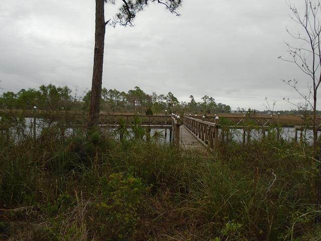 513 Shelly's Loop Rd, CARRABELLE, FL 32322 (MLS #305187) :: Berkshire Hathaway HomeServices Beach Properties of Florida