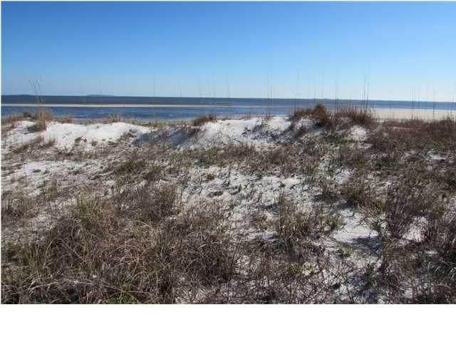 2404 Driftwood Point Ave, CARRABELLE, FL 32322 (MLS #305195) :: The Naumann Group Real Estate, Coastal Office