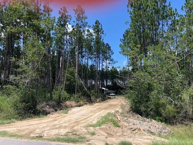 TBD Cr 381, WEWAHITCHKA, FL 32465 (MLS #305398) :: The Naumann Group Real Estate, Coastal Office