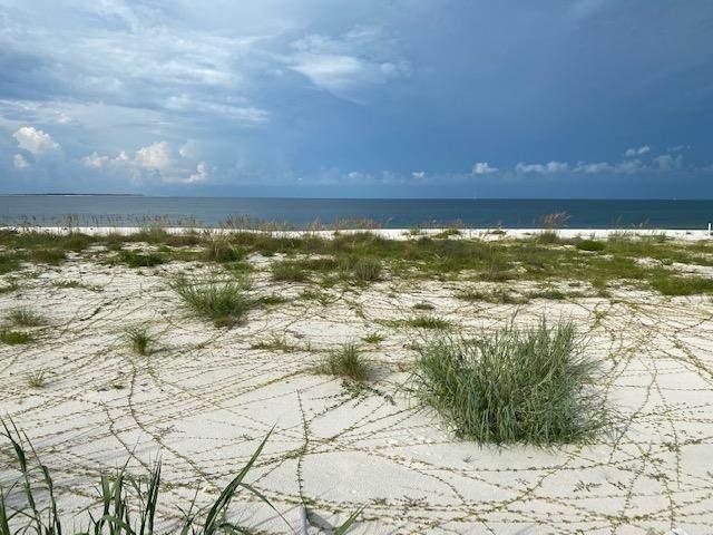 8209 Hwy 98, PORT ST. JOE, FL 32456 (MLS #305568) :: The Naumann Group Real Estate, Coastal Office
