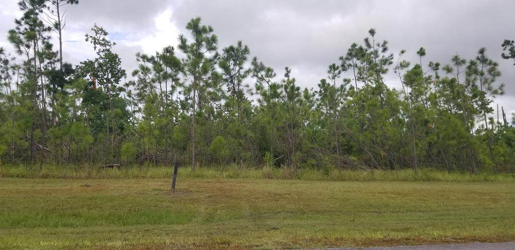 Lot 67 Wide Water Cir - Photo 1