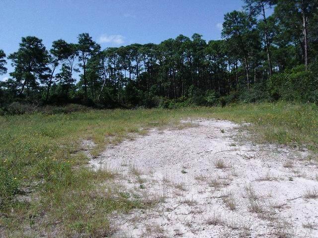 00 Hwy 98 W, CARRABELLE, FL 32322 (MLS #305841) :: Anchor Realty Florida