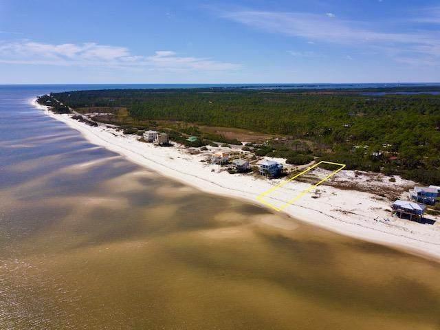 612 Bald Point Rd, ALLIGATOR POINT, FL 32346 (MLS #305891) :: The Naumann Group Real Estate, Coastal Office