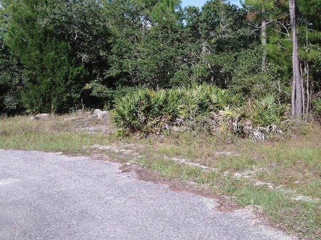 227 Apalachee St, CARRABELLE, FL 32322 (MLS #306026) :: The Naumann Group Real Estate, Coastal Office