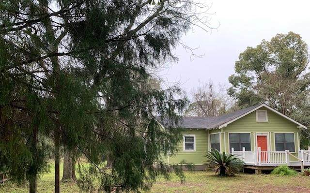 112 Opal Chambers Ln, APALACHICOLA, FL 32320 (MLS #306230) :: The Naumann Group Real Estate, Coastal Office
