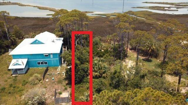 216 EAST Bay Shore Dr, ST. GEORGE ISLAND, FL 32328 (MLS #306553) :: Anchor Realty Florida