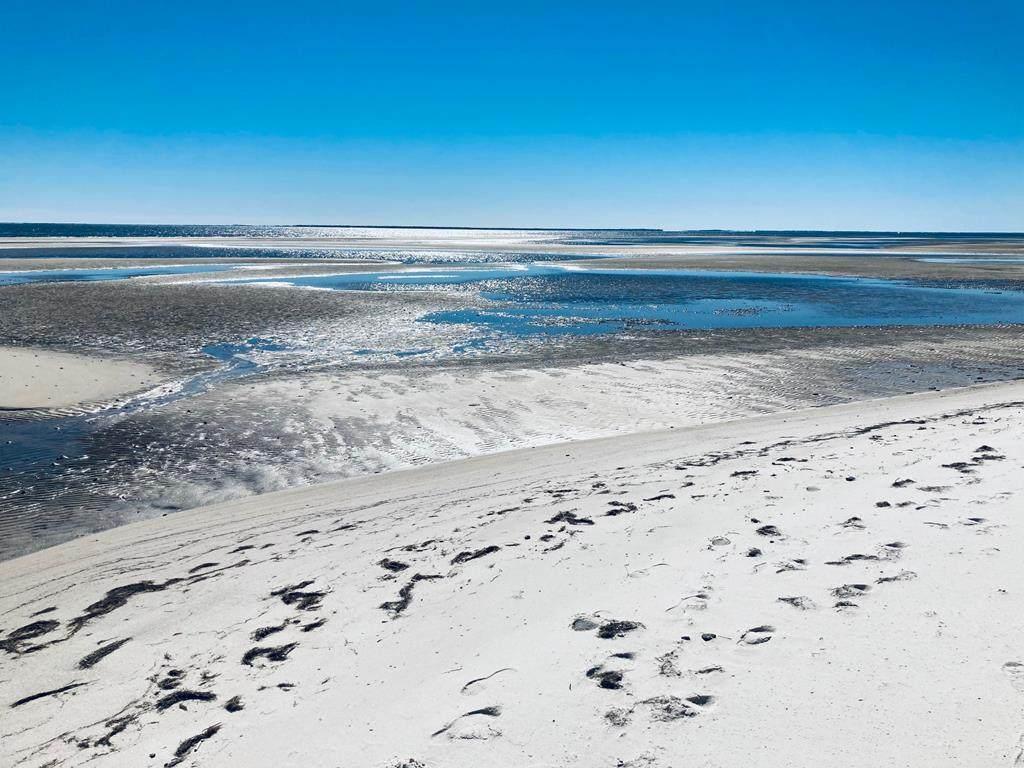 2818 Hidden Beaches Rd - Photo 1